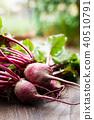 야채, 채소, 식물 40510791