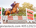 Young rider man jumping on horse over obstacle 40512023