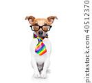 gay pride dog 40512370