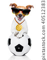 soccer jack russell dog 40512383