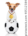 soccer jack russell dog 40512384