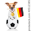 soccer jack russell dog 40512385