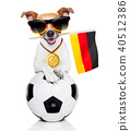 soccer jack russell dog 40512386