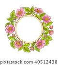 rose, flower, wild 40512438