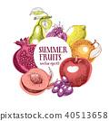 fruits, vector, frame 40513658