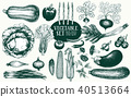 Vegetables hand drawn vector illustration set. Retro engraved style illustrations. Can be use for 40513664