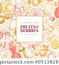 fruits, vector, illustration 40513828