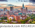 Taipei, Taiwan Skyline 40514014