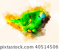 Emerald Green parrot and softly blurred watercolor background. 40514506