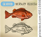 Norway redfish sketch for shop signboard 40515608