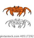 orange crab vector illustration sketch doodle 40517292