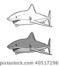 gray shark vector illustration sketch doodle  40517296