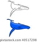 blue whale vector illustration sketch doodle 40517298