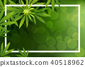 green cannabis leaf drug marijuana herb Background 40518962