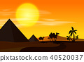 Desert scene with camels at sunset 40520037