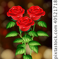 Beautiful Roses with Blur Background 40521718