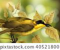 bird vector tree 40521800