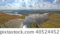 rice farmed fields in italy aerial view 40524452