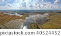 field, italy, paddy 40524452