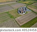 field, italy, paddy 40524456