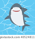 Cute Shark on Water Background 40524811