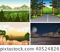 Background scenes with trees in mountain 40524826