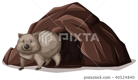 Outstanding Wombat Walking Out Off The Cave Stock Illustration Machost Co Dining Chair Design Ideas Machostcouk