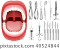 Human Mouth and Dental Equipment 40524844