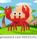 Happy Hermit crab in Land 40525141