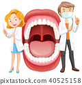 dentist, anatomy, mouth 40525158