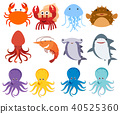 Sea Creatures on White Backgriund 40525360
