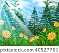 Sunshine Over the Flower Forest 40527791