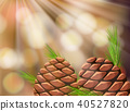 Pine Cone in Nature Template 40527820