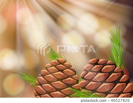 Pine Cone in Nature Template 40527820