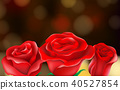 Roses Flower on Nature Background 40527854