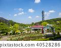 초여름의 동산 식물원 40528286