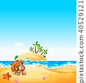 summer, beach, vector 40529121