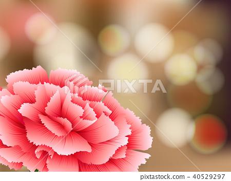 Carnation Flower on Nature Background 40529297