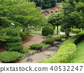 green leaves, arboreal, Side Walk 40532247