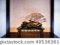 Juniper Bonsai Omiya Bonsai Museum, Saitama, Japan 40536361