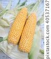 summer, midsummer, corn 40537167