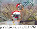 大山 駅 站 40537764