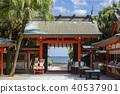 青島神社 40537901