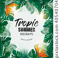 summer, tropical, background 40540704