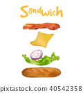 Ingredients for burger and sandwich Vector 40542358
