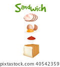 Ingredients for burger and sandwich Vector 40542359