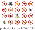 Insects icon set, flat style 40543733