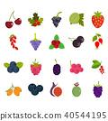 Berries icon set, flat style 40544195