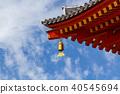 药师寺 顶头寺庙 世界遗产 40545694