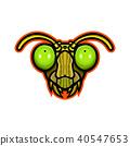 Praying Mantis Mascot 40547653